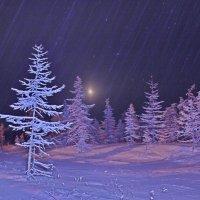 Ночная лесотундра :: Александр Велигура