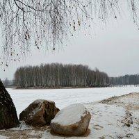 Остров на замерзшем пруду :: Милешкин Владимир Алексеевич