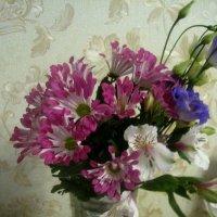 И зимой цветут цветы! :: Елена Семигина