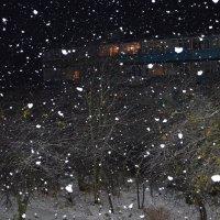 Первый снег :: svet sveteka