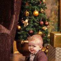 Новогоднее фото :: Валерия Ступина