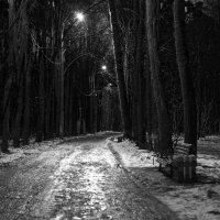 вечер в парке :: alexzonder
