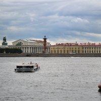 Вид с конверкского моста :: Галина Galyazlatotsvet