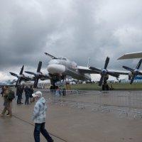 Бомбардировщик Ту-95 :: Andrew