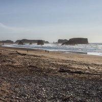 Пляжный бардачок... :: АндрЭо ПапандрЭо