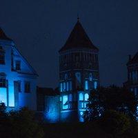 Мирский замок в ночи :: Денис Samuila