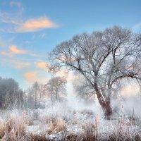 Утро ноябрьских морозов...3 :: Андрей Войцехов