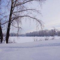Начало зимы :: Наталия Григорьева