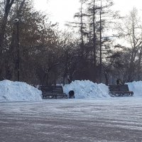Лавочки откопали! :: Наталья Тимофеева