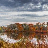 Осенний парк :: Сергей Швайбович
