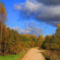 Осенняя дорога :: Nikolay Shumilov