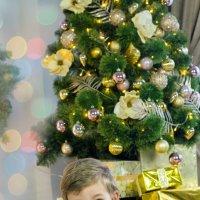 Новый год скоро :: Алёна Жила
