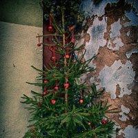 Ротенбург.Рождественская сказка :: Юлия Широкова