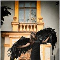 черный ангел :: Ольга Степанова
