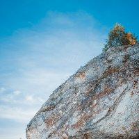 Гора Ежик :: maxihelga ..............