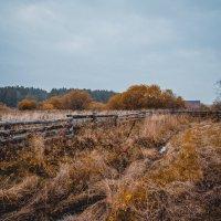 Осень :: maxihelga ..............
