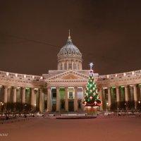 Санкт-Петербург :: Жанна Рафикова