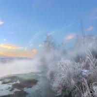 Узорное утро ноябрьских морозов...2 :: Андрей Войцехов