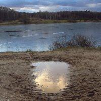Ждем нового снега до Нового года :: Андрей Лукьянов