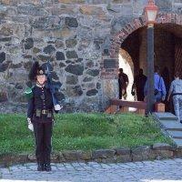 Королевский гвардеец.(Норвегия) :: Александр Лейкум