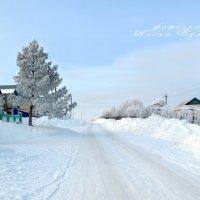 зима :: Алена Булдина
