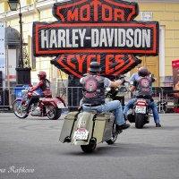 St.Petersburg Harley® Days. 6-9.08.2015г. :: Жанна Рафикова