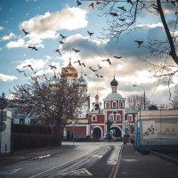 Декабрь 2015 :: Ольга Афанасьева