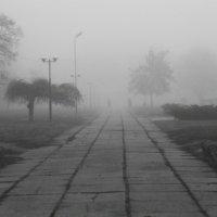 Только неизвестность пленяет нас. В тумане все кажется необыкновенным. (Оскар Уайльд) :: Ксения Довгопол