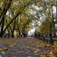 Осенний город :: юрий Амосов