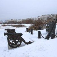 На берегу Белого моря :: Светлана Ку