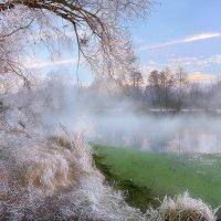 Утро ноябрьских морозов...4. :: Андрей Войцехов