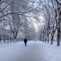 зима пришла :: gribushko грибушко Николай