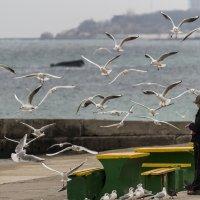 Море зимой вкуснее :: Сергей Волков