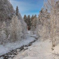 Морозный денек :: vladimir Bormotov