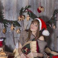 новый год :: Анна Терпелец