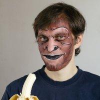 Monkey :: Никола Н