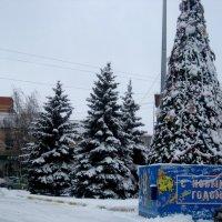 Навстречу Нового года :: Елена Семигина