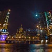 Благовещенский мост в Санкт-Петербурге :: Дмитрий Рутковский