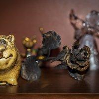 Кот и Роза :: Андрей Дворников