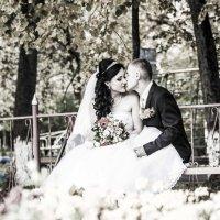 Свадьба :: Сергей Кудрявцев