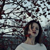 ///// :: Alena Dolganova