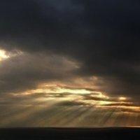 зимний солнечный дождь из лучей :: viton