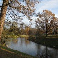 Нет грусти в осени - есть торжество и красота... :: ТАТЬЯНА (tatik)