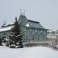 Снежная зима :: nika555nika Ирина