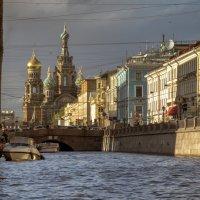 Ракурс на закате :: Valeriy Piterskiy