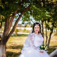 невеста :: Елена Сметанина