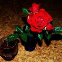 роза :: Леонид Натапов