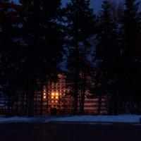 Закат в декабре :: Наталья