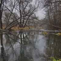 На берегу реки Рожайки. :: Ирина Нафаня