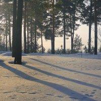 Снег и тени :: Павлова Татьяна Павлова